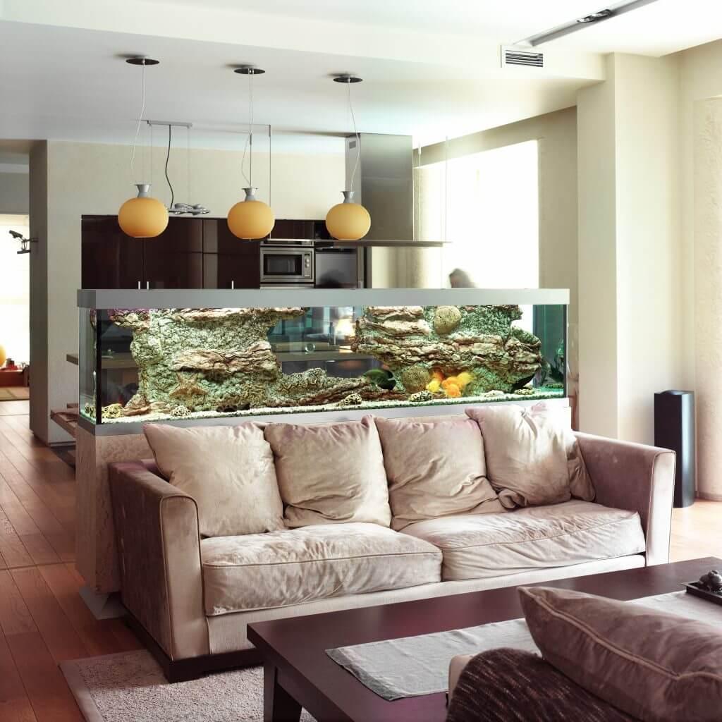 how to move an aquarium