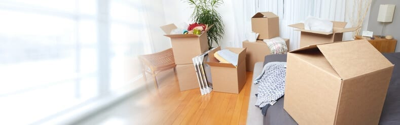 the 9 best packing and moving tips for any family